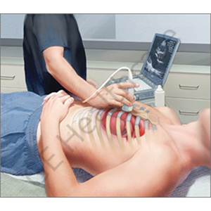Introduction Training to  Critical Care Ultrasound (Scanning Technique and Ultrasound Anatomy)